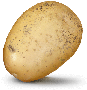 Potato with $10bn value on it