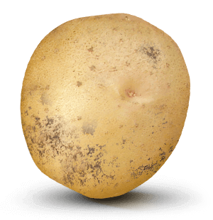 Potato with 22,000 value on it