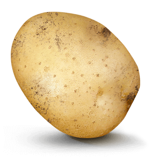 Potato with 1 in 4 value on it