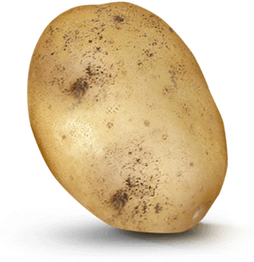 Potato with 160 value on it