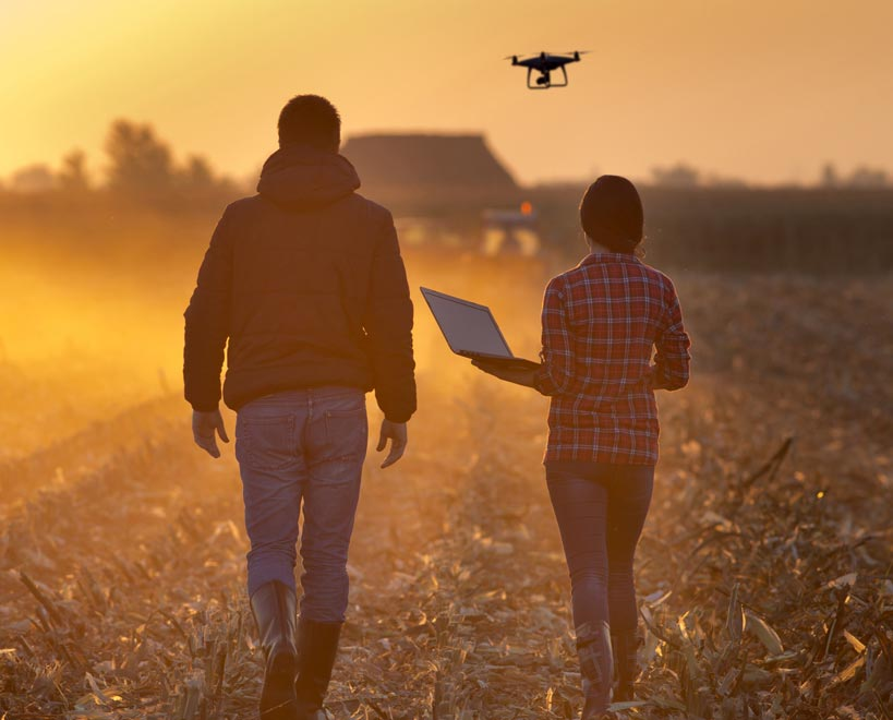 People stood in farming field with drone